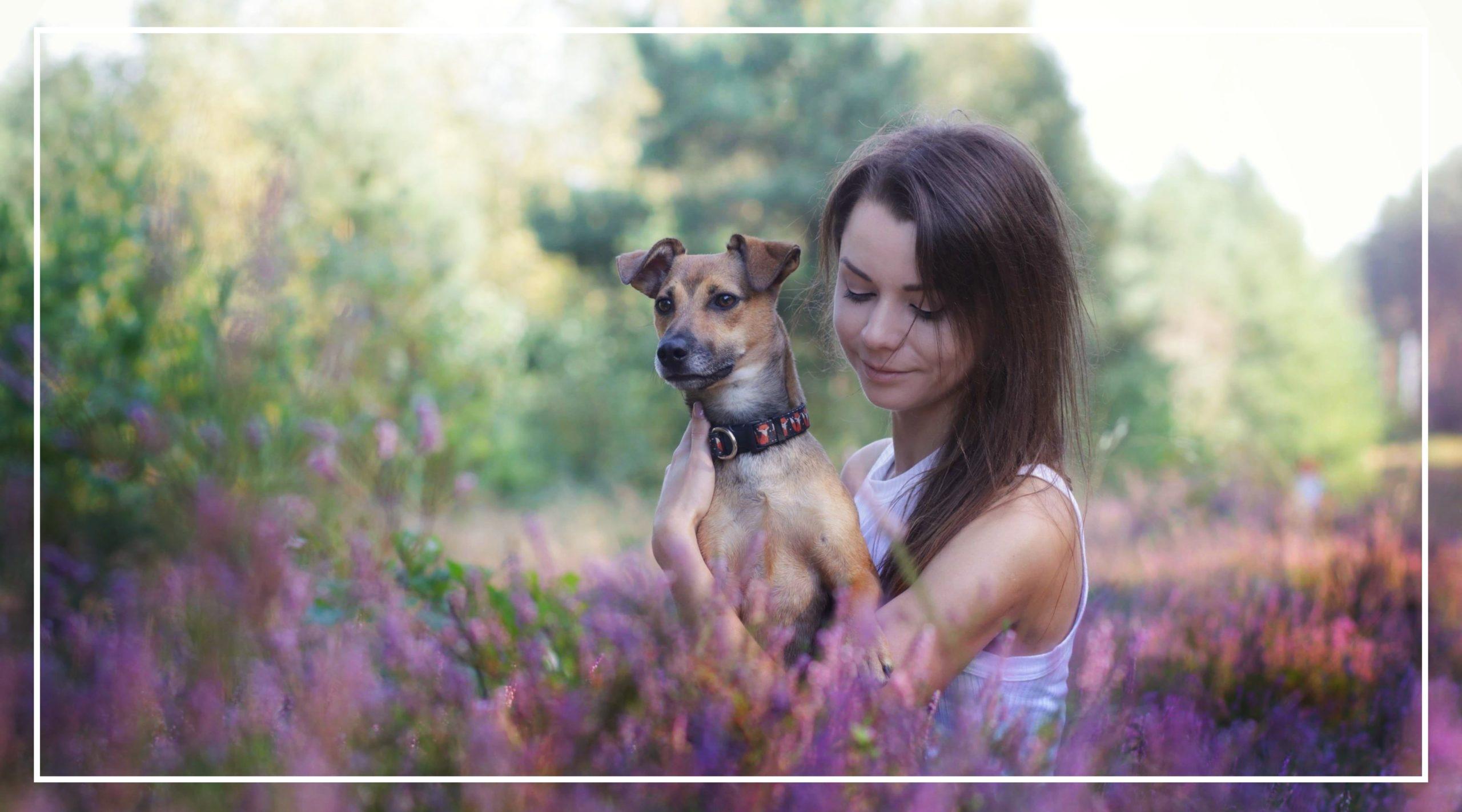 Nasze życie z Fuksem. Psie blogowanie.